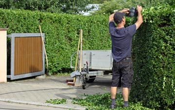 professional Riverside Docklands hedge cutting services